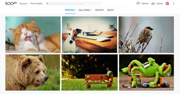 500px image slider for WordPress