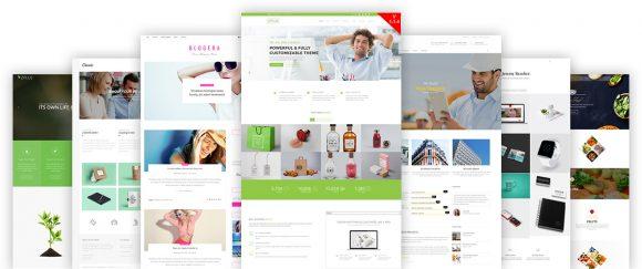 Fully Customizable WordPress Theme