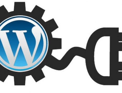 Discover the power of WordPress plugins that can help you build high performing websites